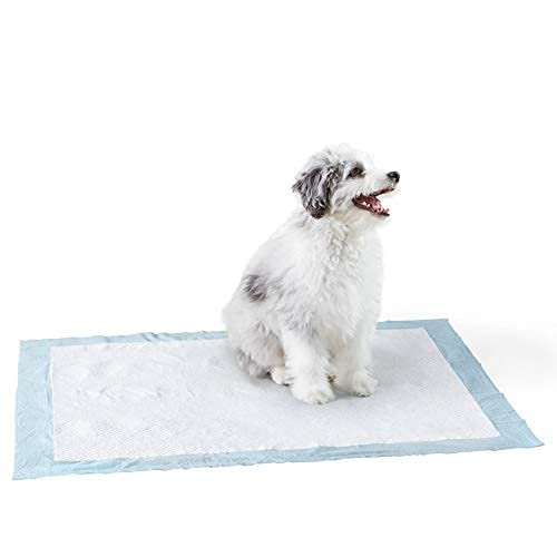 Amazon Basics Dog and Puppy Pads, Heavy Duty Absorbency Pee Pads with Leak-proof Design and Quick-dry Surface for Potty Training, X-Large (28 x 34 Inches) - Pack of 50