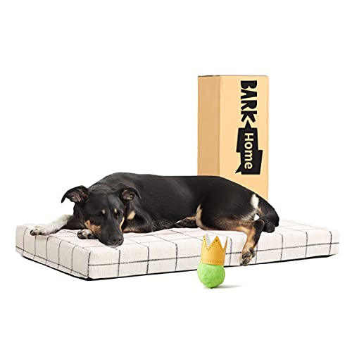 Barkbox Memory Foam Platform Dog Bed | Plush Mattress for Orthopedic Joint Relief | Machine Washable Cuddler with Removable Cover and Water-Resistant Lining | (Medium, White Plaid)