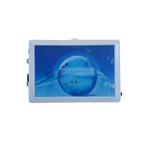 Ozonisator Ozongenerator PH & Redox Wasseraufbereitung Belüftung Aquarium Teich OZA.
