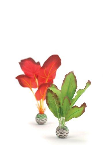 biOrb 46099 Set de 2 Plantas de Seda Pequeñas, Verde y Roja, Un tamaño