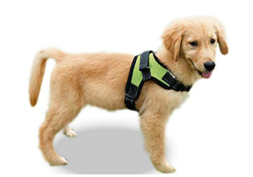 Copatchy Reflective No Pull Adjustable Dog Harness