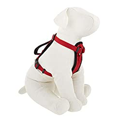 Kong Dog Harness Quick Control Kong Rope Leash