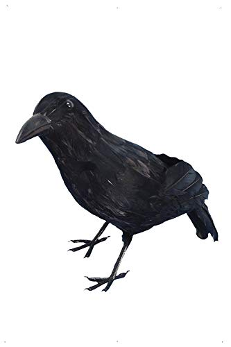 Smiffys-20739 Halloween Cuervo, con Plumas, 33cm, Color Negro, No es Applicable (Smiffy