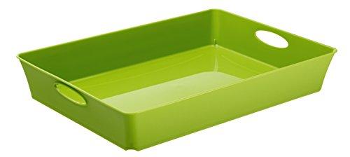 Rotho Living  große Ablageschale / Tablett, Kunststoff (PP), grün, A4 / 4.5 l (37,5 x 26,6 x 6 cm)