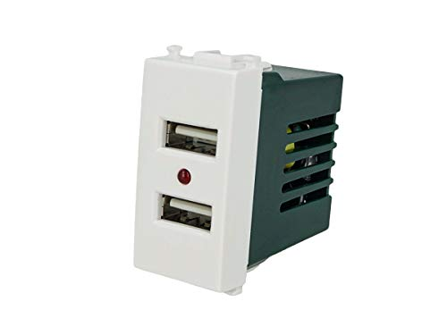 SANDASDON SD71760 Modulo Caricatore USB X2 Da Muro 2 Porte USB 5V 2,1A Bianco Compatibile Vimar Plana