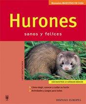 Hurones (Mascotas en casa)
