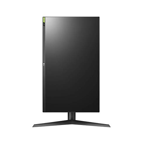 The best gaming monitor, ever? The LG 27GL850-B 1