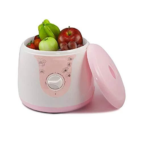 QYY 4L Haushalt Obst Und Gemüse Waschmaschine, Multifunktions-Ozon-Obst- Und Gemüse Desinfektion Maschine Für Geschirr/Schmuck/Gläser/Zahnersatz/Babyprodukte