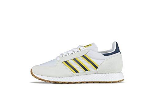 Adidas Forest Grove, Zapatos de Escalada Hombre, Multicolor (Balcri/Ftwbla/Aninoc 000), 42 EU