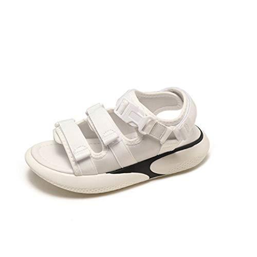 Sandalias de Moda para Mujer Plataforma Plana de Verano Zapatos Inferiores Suaves para Mujer Estilo Coreano Aumento de la Altura A pie de Playa Sandalias de Ocio