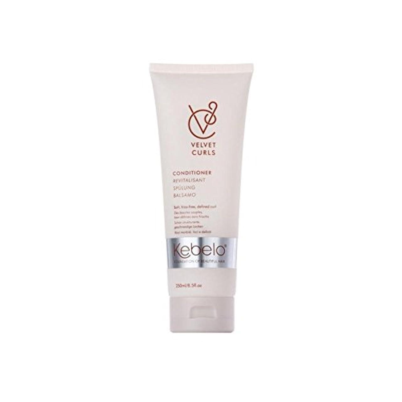 パイント発火するシャワーKebelo Velvet Curls Conditioner (250ml) (Pack of 6) - ベルベットのカールコンディショナー(250ミリリットル) x6 [並行輸入品]