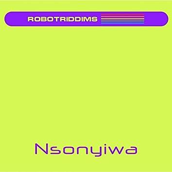 Nsonyiwa