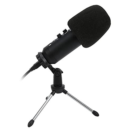 Datorinspelningsmikrofon, utan någon annan drivrutinsprogramvara eller ljudkort Utmärkt trohet med ett aluminiumlegeringsskal för hemstudio/chatt(short hair, Pisa Leaning Tower Type)