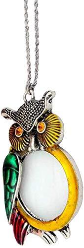 Wxxdlooa Europese en Amerikaanse Mode Sieraden Ketting Glas, Hanger Leuke uil Trui Ketting Vrouwelijke Vergroting Spiegel