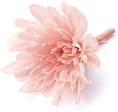 オオチノウエン(Ohchinouen) ことね菊 シルキーピンク 花径 約5.0~6.5cm プリザーブドフラワー DO004790-131 6輪入
