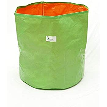 BIO Blooms Agro India PVT LTD 100% UV Treated Plastic Grow Bag for Terrace Gardening - Grow Vegetables, Fruits, Onion & Other Leafy Vegetables, 18 x 18 inch - Green