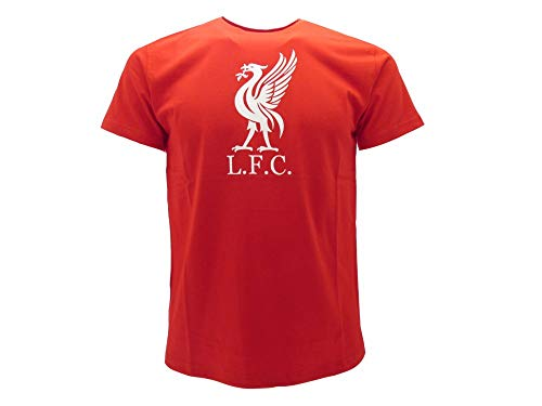 T-Shirt Ufficiale Liverpool F.C. (7-8 Anni)