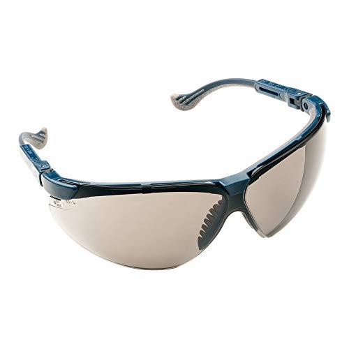 Honeywell 1011025 XC Blue, Frame TSR Gray FogBan Lens Safety Goggles