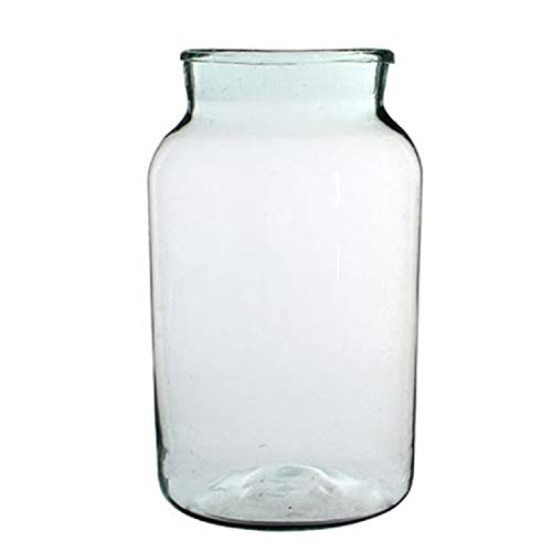 Cilinder vaas/bloemenvaas transparant glas 52 x 29 cm Transparant