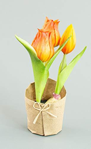 DauerFloristik Tulpe mit 3 Blüten im Erdballen mit Papiermanschette 19 cm orange gelb künstlich