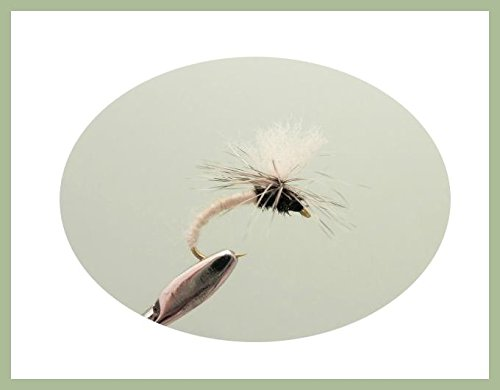 Klinkhammer Trout Fliegen, 6Pack, weiß kinkhammers, Auswahl von Größen, Fly Angeln