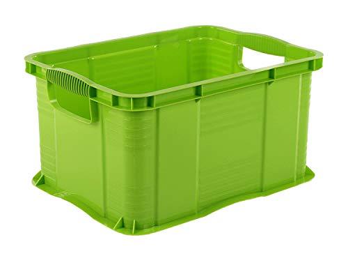 Rotho Agilo Aufbewahrungsbox 17,5l, Kunststoff (PP) BPA-frei, grün, A4/17,5l (39,0 x 29,0 x 21,5 cm)