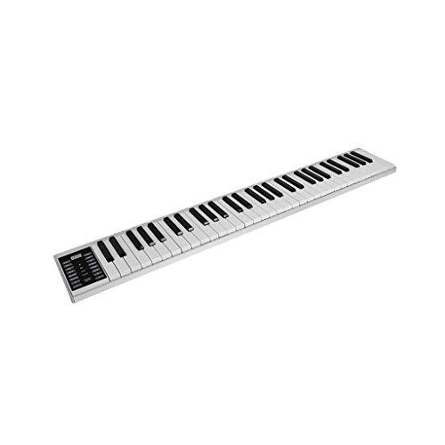 ZXL Digitales Klavier Tragbare Handrolle Klavier Üben Mobiles Tragbares Elektronisches Klavier Anfänger Kinder Multifunktionstastatur 88 Tasten 61 Tasten (Größe :),Bluetooth-Stil 61 Tasten