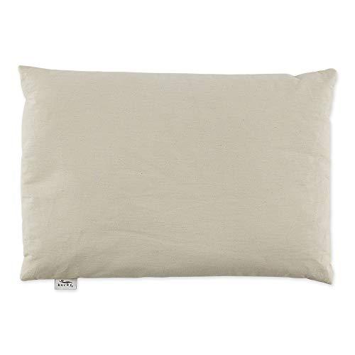 Bucky Large Buckwheat Pillow, Natural, Standard Size (23 x 16)