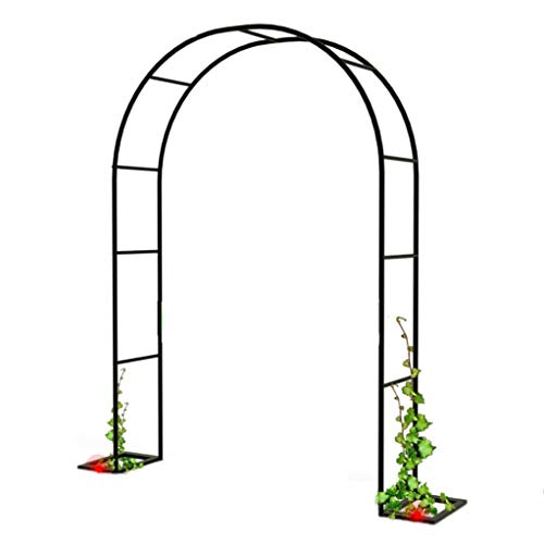 RuBao Outdoor Flower Garden Arch-Gitter wetterfeste Rankhilfe, Outdoor Indoor Rose Arbor Plant Klettergerüst, Eisen, Hochzeitsgarten Braidal Arch Arbor Party Dekoration (Schwarz)