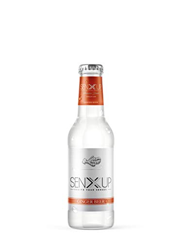 SENXUP Ginger Beer - Premium Mixer, Confezione 24 x 200 ml vetro