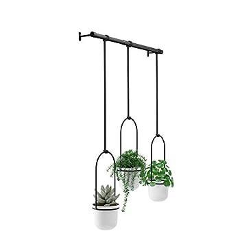 Best hanging wall planter indoor Reviews