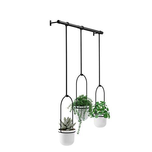 Umbra Triflora Hanging Planter for Window, Indoor Herb Garden, White/Black Vaso, Bianco, Taglia Unica