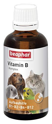beaphar Vitamin B Complex | B Vitamins for Dogs, Cats, Rodents, Birds | for Grooming by Haus-Tieren | for a Good Wellbeing | Vitamin-Tropfen 50 ML