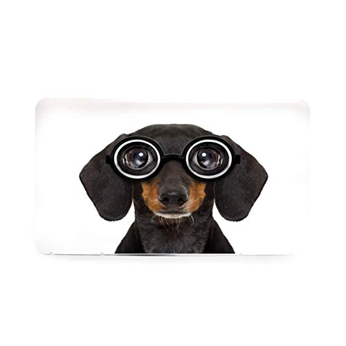 Portable Mask Storage Bag Dumb Nerd Silly Dachshund Sausage Dog in Funny Glasses Mask Case, Mask Box, Masks Organizer for Recyclable/Dust Mask Storage Box Holder for Mask Pollution Prevention Plastic