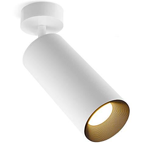 Xodzasg Lámpara de techo LED,foco ajustable de 360°,plafón con focos,luz de techo de montaje en superficie,Metal aluminio,negro,10W (blanco+blanco cálido)