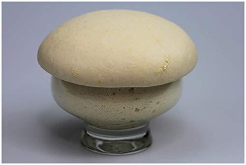 Bio Lievito Madre 200 g | triebstarker Weizensauerteig zum Backen ohne Hefe | frisches Anstellgut direkt vom Demeter Bäcker