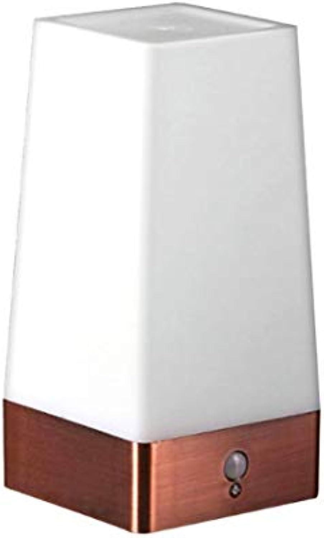 Led Table Lamp Desk Lamp Light Human Body Induction Light Small Cordless Motion Sensor Night Lights Bedroom Decoration Lighting C