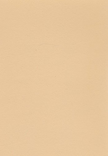 Volvox | Espressivo Lehmfarbe | Preisgruppe A Größe 2,50 L, Farbe apricot | 284