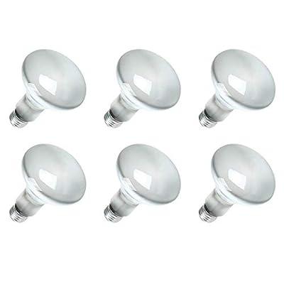 Sylvania 15160-6 120-Volt 65-Watt Flood Lamp Bulbs (6 Pack)