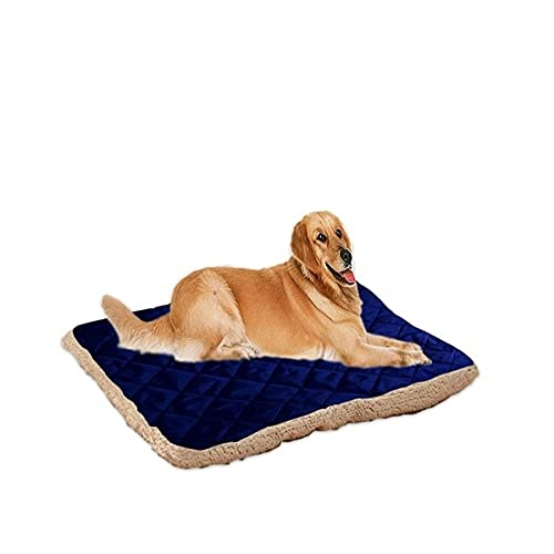 Freenfitmall Cama para perro, alivia la artritis de mascotas y el dolor de displasia de cadera, terapéutico y de apoyo, cama para perro para cachorro, sofá corto de lujo para mascotas (M,azul marino)