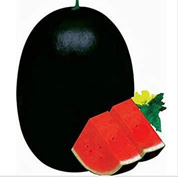 Visa Store 50 PCS Giant Watermelon Graines Black Tyrant King Super Sweet Watermelon Home Jardinage