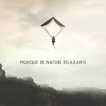 Musique de nature relaxante: Oasis de méditation, détendez-vous dans le sommeil (Exercices de respiration anxieux)