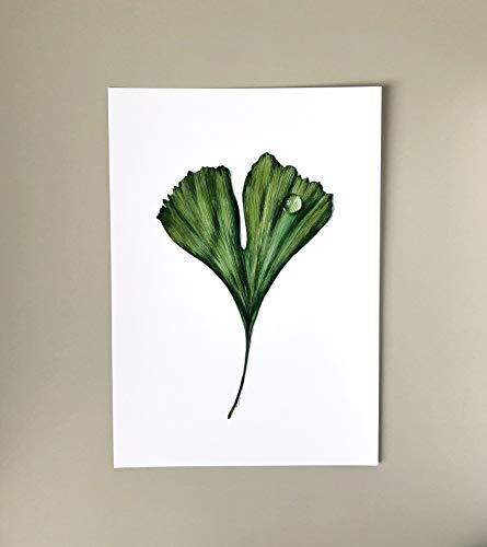 Ginkgo Blatt A4 Botanik Poster, Aquarell Bild Print, grünes Blatt mit Tautropfen, Pflanzen Illustration, Kunstdruck Wand-Deko, Fine Art Print, Skandi Style, Skandi-Stil, Geschenk Idee