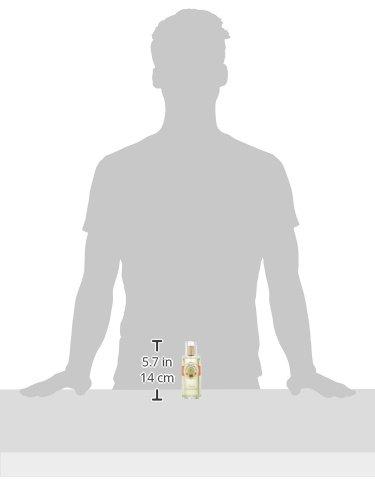 【ロジェガレ】オスマンティウスパフュームウォーターEDC・SP100ml[並行輸入品]