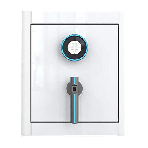 WSMLA Caja fuerte de seguridad digital, seguridad Key Lock doble y contraseña, especial propia Iocking Interior Compartimento seguro for la oficina en casa