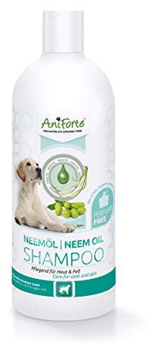 AniForte Neemöl Shampoo für Hunde 500ml - Hundeshampoo gegen Juckreiz Hund, Pflegeprodukt, Parfümfrei & Hautfreundlich, Pflegend & leicht kämmbar, Fellpflege & Fellglanz, Angenehm im Geruch