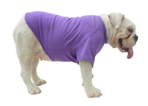 Lovelonglong Bulldog Clothes Dog Clothing Blank T-Shirt Tee Shirts for French Bulldog English Bulldog American Pit Bull Pugs 100% Cotton Skin Care Purple B-XL
