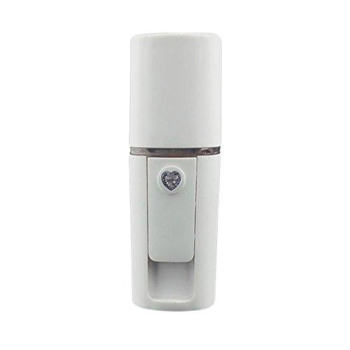 Frcolor Nanomètre Pulvérisateur Nano Spray Bottle Handheld Rechargeable Facial Beauty Water Mist Pulvérisateur
