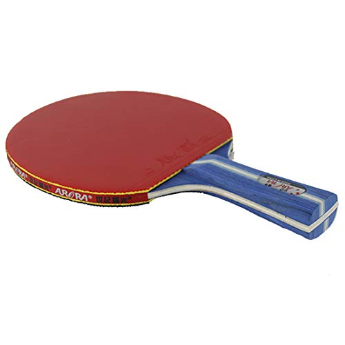 Fantastic Prices! HUATINGRHPP Ping Pong Ping Pong Paddle Table Tennis Balls Bats with One Bat and Ra...
