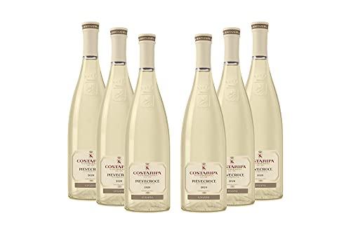 COSTARIPA Pievecroce 2020 DOC Trebbiano di Lugana 6 bottiglie di Vino Magnum 1,5 L Colore paglierino, Fruttato, Floreale, Vino Fresco con note di frutti tropicali